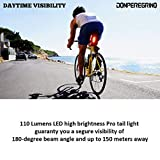 DON PEREGRINO B1-110 Lumens High Brightness Bike
