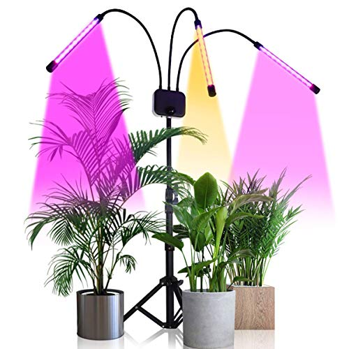Grow Light with Stand