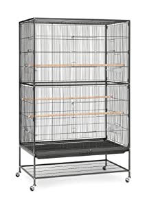 2. Prevue Hendryx Pet Wrought Iron Flight Cage.