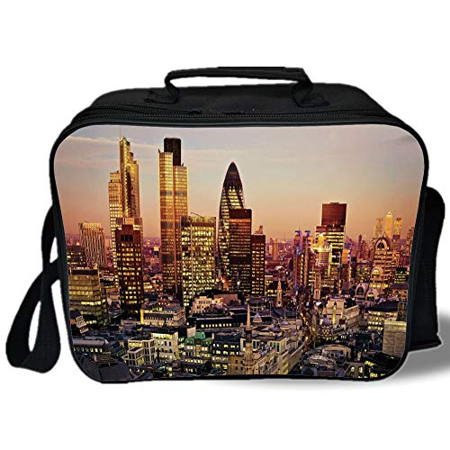 New York Decor 3D Print Insulated Lunch Bag,Global City Sunset with Light Reflecting on Skyscrapers Famous Town Landmark View,for Work/School/Picnic,Multi
