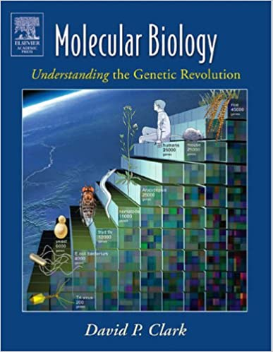Book Molecular Biology: Understanding the Genetic Revolution