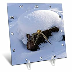3dRose Alexis Photography - Seasons Winter - Cap of fresh snow on an old tree stump in a winter forest - 6x6 Desk Clock (dc_283801_1)