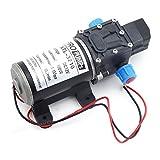 Labellevie DC 12V 100W Motor 8L/Min High Pressure Diaphragm Water Self Priming Pump for Wash