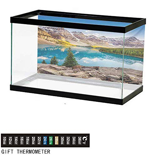 wwwhsl Aquarium Background,Landscape,Idyllic View of Moraine Lake at Sunset in Canadian Rocky Mountain Range Picture,Multicolor Fish Tank Backdrop 48