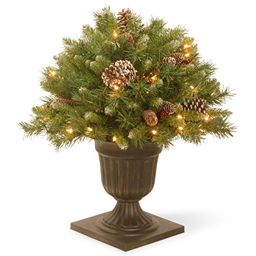 National Tree 24 Inch Frosted Berry Porch Bush with Red B...