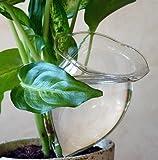 4 Bolas de riego gradual ideal para cuando se va de vacaciones Bolas de riego Bola de sed Plantas GFGR