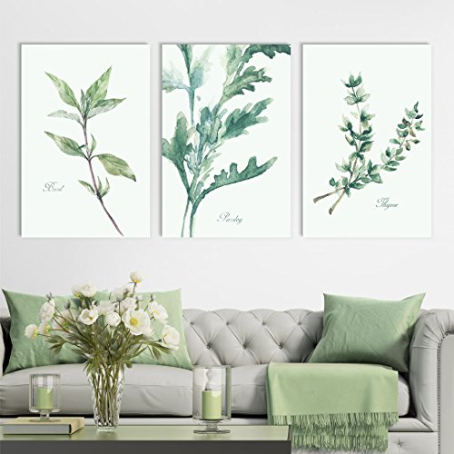 wall26 3 Panel Canvas Wall Art - Watercolor Style Plants of Basil and Parsley and Thyme - Giclee Print Gallery Wrap Modern Home Decor Ready to Hang - 16''x24'' x 3 Panels by wall26