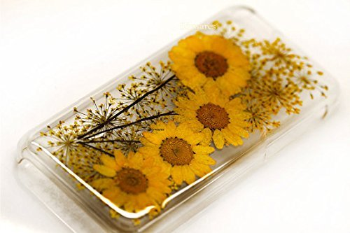 SSummer Yellow Daisy and Lavender Handmade Real Dried Pressed Flowers Case for iPhone 5 / 5s , iPhone 6 4.7 / iPhone 6 Plus 5.5