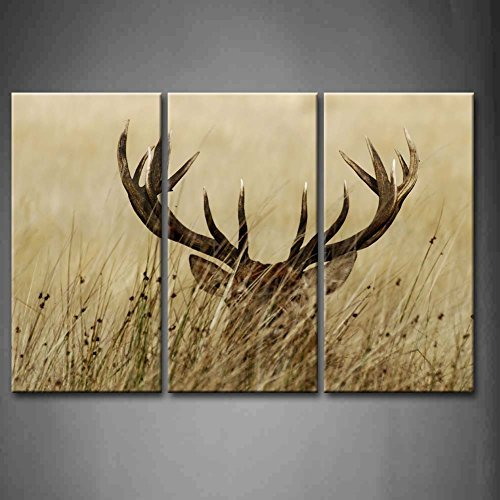 - 3 Panel Wall Art Deer Stag With Long Antler In The Bushes Painting The Picture Print On Canvas Animal Pictures For Home Decor Decoration Gift piece (Stretched By Wooden Frame,Ready To Hang)