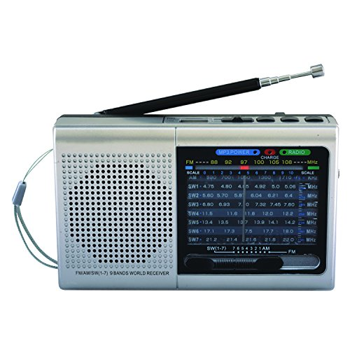 SuperSonic 9 Band Bluetooth Radio with AM/FM and SW1-7, Sliver (SC-1080BT-Silver)