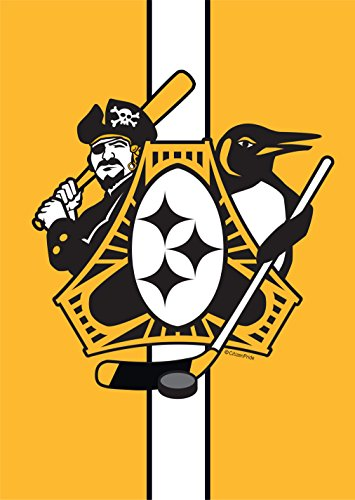 City Flag Pittsburgh (Citizen Pride Pittsburgh Three Rivers Roar Sports Fan Crest Garden Flag by Joe Barsin 12 x 18-Inch Decorative USA-Produced)