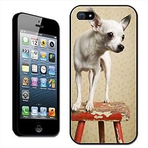 Fancy A Snuggle - Carcasa rígida para iPhone 5, diseño de chihuahua sobre un taburete