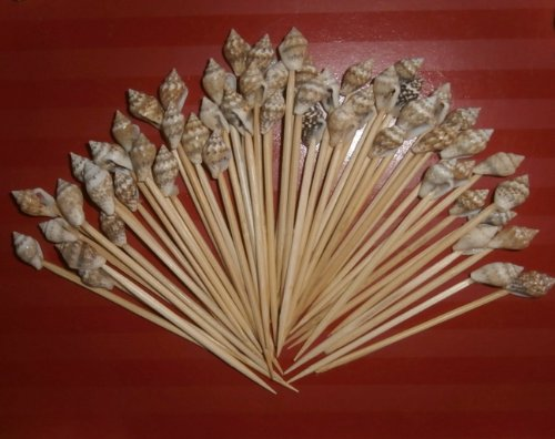 100-Seashell-Toothpicks-for-Beach-Wedding-Shell-Tiki-Bar