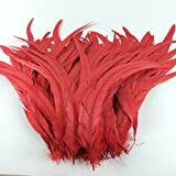 Sowder Red Rooster Coque Tail Feathers 12-15inch Lengh Pack of 50