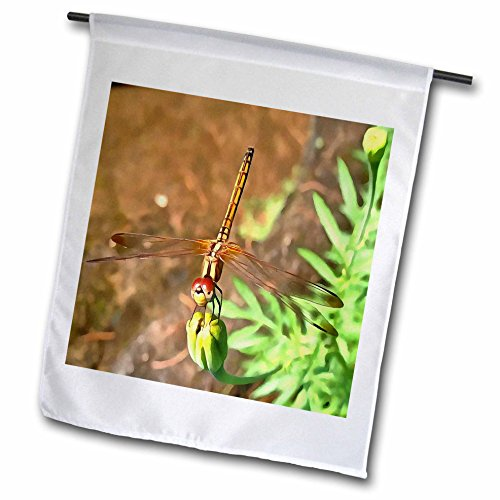 Taiche - Acrylic Painting - Dragonfly - Dragonfly - 12 x 18 inch Garden Flag (fl_245550_1) (Gossamer Streamer)