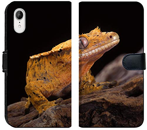 Luxlady iPhone XR Flip Fabric Wallet Case Image ID: 20327086 Crested Gecko Nocturnal Native to New Caledonia One of The Most Beautifu