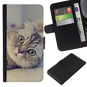 Sony Xperia Z4v / Sony Xperia Z4 / E6508 - Dibujo PU billetera de cuero Funda Case Caso de la piel de la bolsa protectora Para (Cute Scottish Fold Cat)