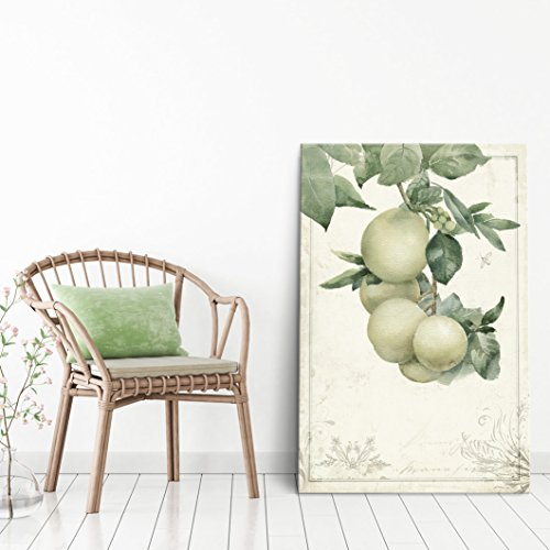 Vintage Style Fruits on Tree Branch