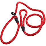 Coolrunner Pet Dog Slip Training Leash Lead for Dogs 10-80lbs 4foot/1.2m Long