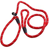 Coolrunner Pet Dog Whisperer Cesar Slip Training Leash Lead Collar (Red)