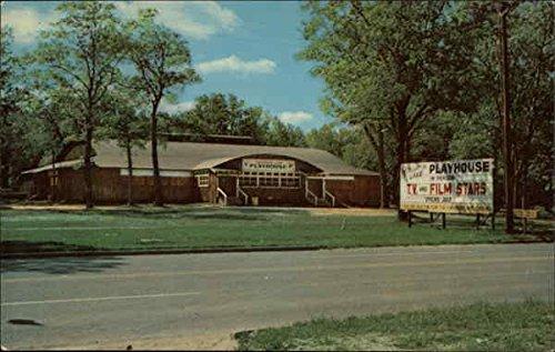 Houghton House - Houghton Lake Playhouse Houghton Lake, Michigan Original Vintage Postcard
