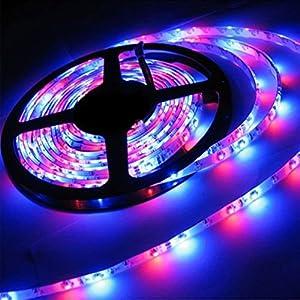 Strip Lights, LED Strip Lights, eBoTrade 5M/16.4 Ft SMD 3528 RGB 300 LED Color Changing Kit LED Ribbon DIY Christmas Holiday Home Kitchen Car Bar Indoor Party Decoration