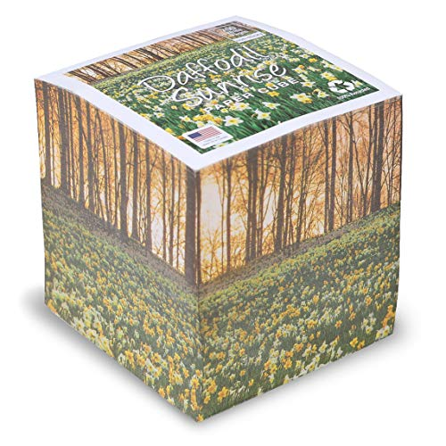 EARTHCUBE (Daffodil Sunrise Design) Blank White 3.5 Inch Note Cube (Not Sticky) Made in USA (Paper US or CAN) 100% Recycled 700 Tear-off Pages (Not - Cube Stationary