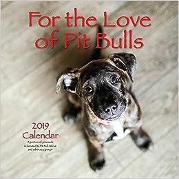 For the Love of Pit Bulls 2019 Calendar: Dog Park Publishing