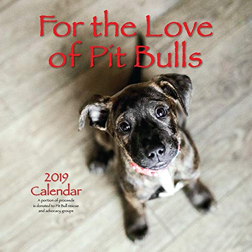 Which is the best pit bull calendar 2019?