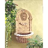 Classically styled Lion Head Outdoor Yard Garden Decor Water Pump Cascading Wall Fountain