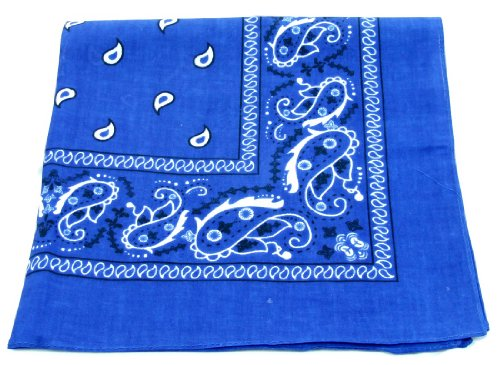 (Bandanas By The Dozen 100% Cotton 12-Pack 22