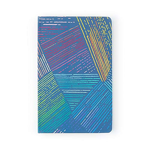 Erin Condren Life Planner 5x8 (January 2019-December 2019) Hardbound - Colorful with Metallic Gold Accents