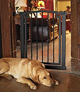 Pet Supplies Orvis Wrought Iron Door Frame Gate