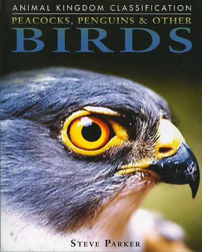 Peacocks, Penguins, and Other Birds (Animal Kingdom Classification) ebook