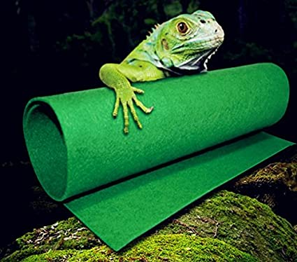 Amazon Com Green Carpet Liner Carpet Cage Mat For Reptiles Snakes