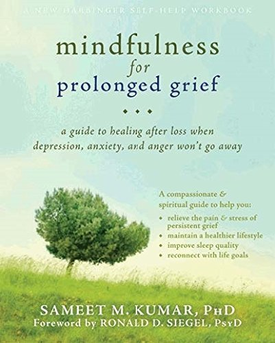 Mindfulness Prolonged Grief Healing Depression product image
