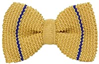 Yellow/Royal Blue Micro Bar Striped Pre-Tied Silk Bow Tie by 40 Colori