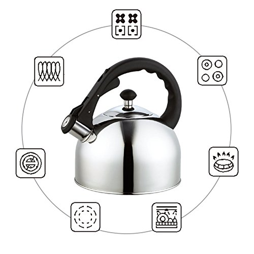 Homeinart Whistling Tea Kettle Stainless Tea Kettles Stovetop 2.6 QT by Homeinart (Image #3)