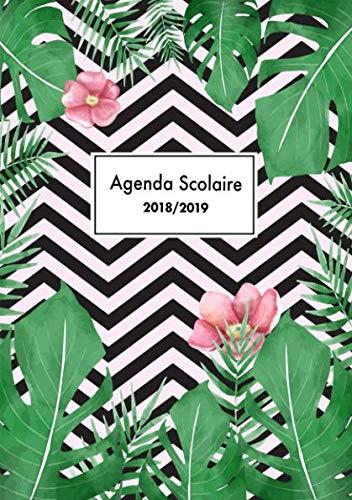 Agenda Scolaire 2018/2019: Agenda Scolaire semainier 2018-2019, Octobre 2018 à Décembre 2019, 1 semaine par 2 pages Format A5 avec slogans inspirants ... de palmier à la mode) (French Edition)
