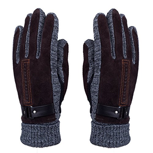 Men's Winter Leather Gloves - Doshop Thick Warm Fleece Windproof Gloves Cold Proof Thermal Mittens - Ideal for Dress Driving Cycling Motorcycle Camping etc (Pigskin Palm Waterproof Gloves)