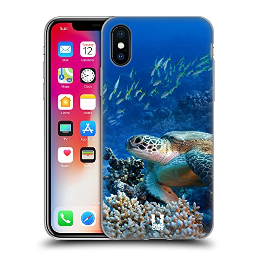 Case+Stand Soft TPU Gel Skin Protector Fits Apple iPhone X/10/Xs Hard Snap on Back Cover Sea Turtle Sitting On Ocean Coral Reef (Virgin Mobile Reef)