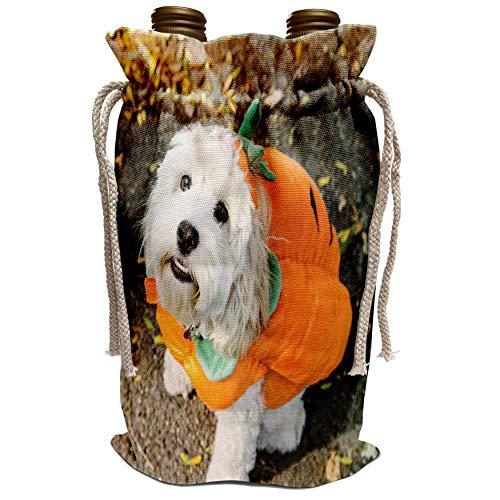 3dRose Danita Delimont - Halloween - Pet Halloween contest at Thompkins Square Park, New York City. - Wine Bag (wbg_231348_1)]()