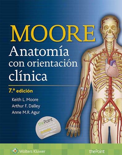 Anatomía con orientación clínica (Spanish Edition) -  Dr. Keith L. Moore MSc PhD FIAC FRSM FAAA, Hardcover
