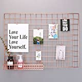 Simmer Stone Rose Gold Wall Grid Panel for Photo Hanging Display & Wall Decoration Organizer, Multi-functional Wall Storage Display Grid, 5 Clips & 4 Nails Offered, Set of 1, Size 21.3''x 29.1''