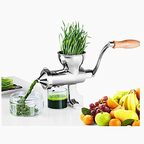 ELEOPTION Manual Wheatgrass Juicer Juice Press, Fast Easy And Clean Orange Squeezer Citrus Juicer Fruit Lemon Juicer Stainless Steel Heavy Duty for Oranges Lemons Wheat Grass Vegetable Fruits