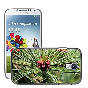 Hot Style Cell Phone PC Hard Case Cover // M00308460 Pine Forest Green Needles // Samsung Galaxy S4 S IV SIV i9500