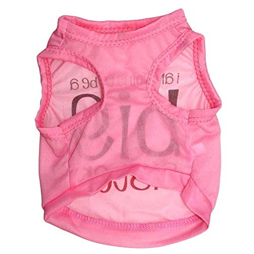 Ollypet Best Seller Girl Dog Clothes Shirt Big Sister Small Pet T shirt Funny Outfit XS/S/M/L