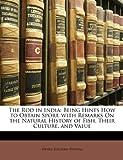 The Rod in Indi, Henry Sullivan Thomas, 1146498411