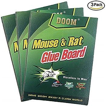 Amazon Com Mouse Traps Mouse Rat Glue Traps Everplus