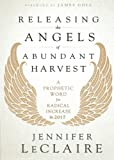 Releasing the Angels of Abundant Harvest: A Prophetic Word for Radical Increase in 2017